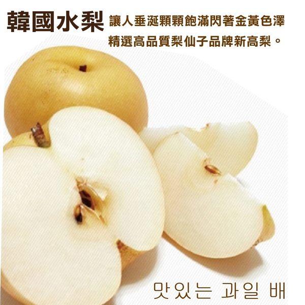 【果之蔬-全省免運】韓國梨仙子X1箱(8-12顆/箱 每箱約5kg±10%含箱重)