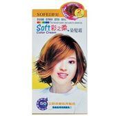 SOFEI 舒妃 彩之柔 染髮霜-2 淺金棕 40g(2入)/盒