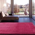 范登伯格 艾蜜莉☆保暖素色長毛地毯-姻紅-140x200cm