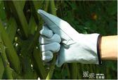 月季防刺園藝手套/護臂長筒皮制柔軟舒適防滑耐用 道禾生活館