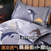 冰絲枕套夏季枕頭套單雙人學生單個涼席枕芯套48x74cm一對裝『蘑菇街小屋』