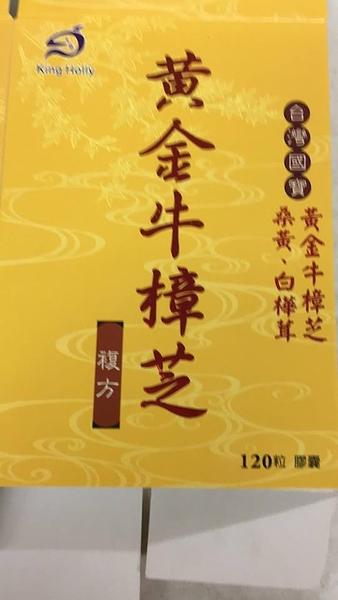 黃金牛樟芝複方膠曩(金禾宇 高倍濃縮 牛樟芝) 120粒/2盒