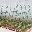 園藝支架植物攀爬架黃瓜爬藤架葡萄架爬藤架子花支架西瓜架子