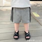 嬰兒運動短褲三條杠夏裝夏季兒童男童寶寶童裝小童休閒洋氣潮1579