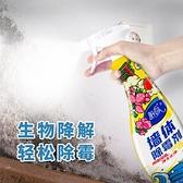 陌莎墻體除霉劑墻紙白墻木材漂白墻布霉菌清除劑墻面去霉斑兩瓶裝 ww