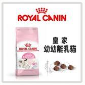 【法國皇家】幼幼貓/離乳貓 BC34-2kg*2包組(A012A02-1)