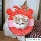 伊麗莎白圈貓咪項圈項圈脖圈可愛恥辱圈寵物脖套