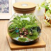 微景觀生態瓶創意盆栽苔蘚植物diy迷你盆栽辦公桌擺件玻璃盆栽