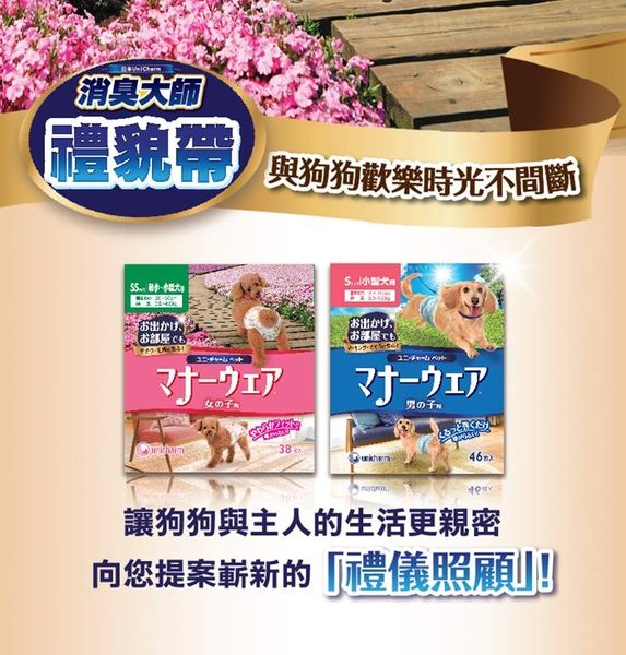 日本Unicharm消臭大師 禮貌帶-女用(M)(34片x4包)│飲食生活家