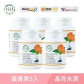 【5入組】HH葉黃素好鐵膠囊(60粒/瓶)