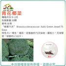 【綠藝家】B02.青花椰菜種子50顆...