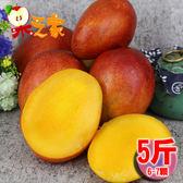 果之家 台南玉井AAA級愛文芒果5台斤(6-7顆)