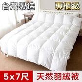 【凱蕾絲帝】台灣製造-耐寒5℃純天然羽絨被(單人5*7尺)