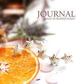 925 純銀磨砂格紋流星針式耳環_ 質物日誌Journal