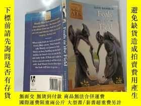 二手書博民逛書店Foals罕見in the Field:A race against time 野馬:與時間賽跑Y200392
