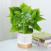 仿真花盆 北歐INS仿真植物裝飾創意小擺件客廳桌面盆栽家居室內假綠植盆景 22色