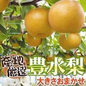 【果之蔬-全省免運】東勢特選高山牛奶豐水梨7A X1箱(60顆/箱 每顆約180g±10%)