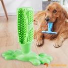 狗狗玩具耐咬磨牙潔齒咬膠自己玩刷牙棒金毛法斗中大型犬寵物用品【小獅子】