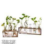 【618好康又一發】創意水培花瓶透明玻璃