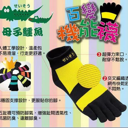 母子鱷魚 百變機能襪 五趾襪 20-28cm 足弓支撐 抗菌防臭 舒適透氣 機能襪 MIT製造 59鞋廊