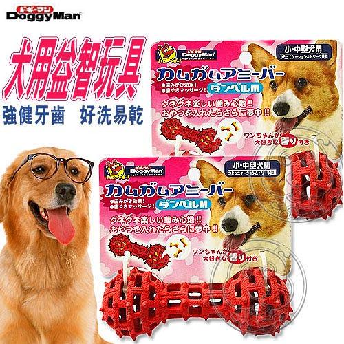 【培菓平價寵物網 】《Doggy Man》犬用益智玩具-啞鈴(M)