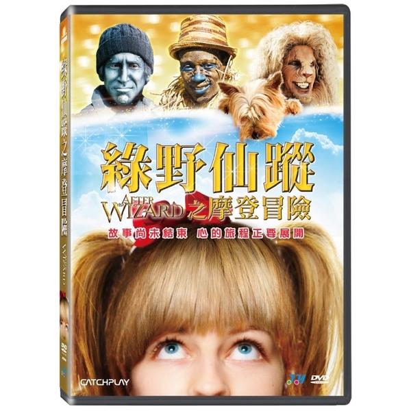 綠野仙蹤之摩登冒險 DVD AFTER THE WIZARD 免運 (購潮8)