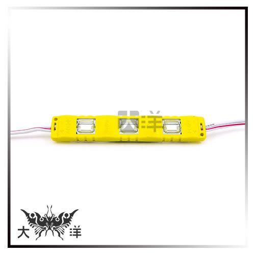 ◤大洋國際電子◢ 5630 LED 3燈 長形模組 50~55Lm (白/暖白/紅/藍/綠/橙) 氣氛燈 裝飾 廣告 看板 1062