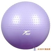 瑜伽球兒童感統訓練嬰兒寶寶早教球觸覺按摩平衡球加厚防爆大龍球【公主日記】