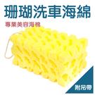 【洗車珊瑚海綿】黃色吊帶款 洗車綿 黃色珊瑚海棉 汽車美容清潔用品 大船回港