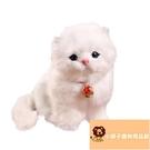 小寵物玩具貓 貓玩偶仿真貓咪公仔模型毛絨玩具貓貓咪公仔模型玩偶【小獅子】