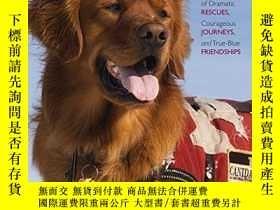 二手書博民逛書店Dog罕見Heroes: A Story Poster Book-狗狗英雄:故事海報書Y346464 Karl