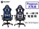 【真·人體工學電競椅】SADES 天馬座 電競椅 電腦椅 辦公椅 調節座椅 電競週邊 電玩 KR-SA-Pegasus