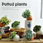 仿真多肉植物小盆景假花盆栽