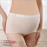 3條裝孕婦內褲純棉底襠高腰托腹可調節夏季短褲懷孕期蕾絲透氣秋