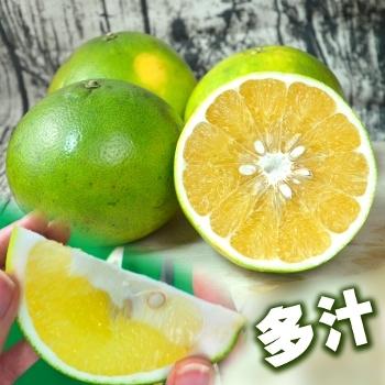 新竹陳家蜜柚10台斤