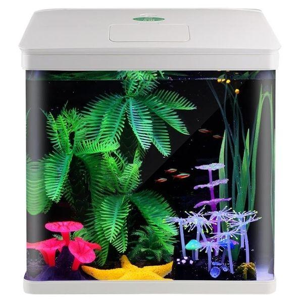 佳璐魚缸水族箱小型玻璃魚缸迷你生態桌面中型創意客廳方形金魚缸1/3