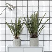 假草落地大型盆栽植物仿真綠植室內辦公室客廳裝飾擺件  igo 卡布奇諾