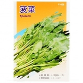 蔬菜種子-菠菜
