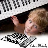 61鍵普通版電子琴 手卷鋼琴 矽膠電子琴 FKNX-RP61K@大毛生活館