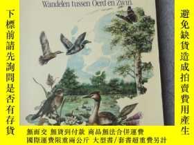 二手書博民逛書店Vroege罕見Vogels landschappen: wan