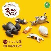 抱枕休眠動物園 ZOO寢睡動物園 柯基柴犬模型擺件 扭蛋緣子
