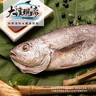 野生現撈 黑喉魚 ( 小尾 150g_一...