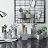 仿真植物裝飾假花擺件ins風北歐盆栽綠植室內客廳多肉小盆景擺設「艾尚居家館」
