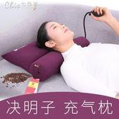 枕頭 決明子頸椎枕護頸枕頭枕芯修復頸椎成人保健勁椎枕蕎麥牽引枕「七色堇」YXS