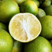 柚是我果園・新鮮綠皮柳丁 5斤/盒(約15~17顆)