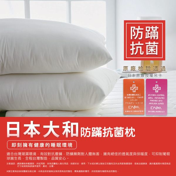 [AnD House] MIT大和防螨抗菌枕二入+經典13色枕套一對
