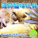 【zoo寵物商城】dyy》仿真超市魚市場薄荷貓咪玩具-大30cm