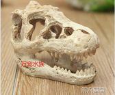 魚缸擺件 恐龍頭骨樹脂爬寵爬蟲水草造景仿真頭骨魚缸水族箱魚缸擺件 第六空間