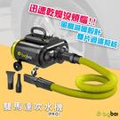 【公司貨】bigboi PRO 雙馬達吹水機 吹風機 車用吹水 汽車清潔 汽車美容