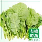 【有機認證生鮮時蔬】千寶菜 ( 250g/包 )